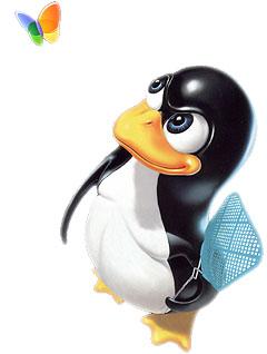 linux_vs_microsoft.jpg
